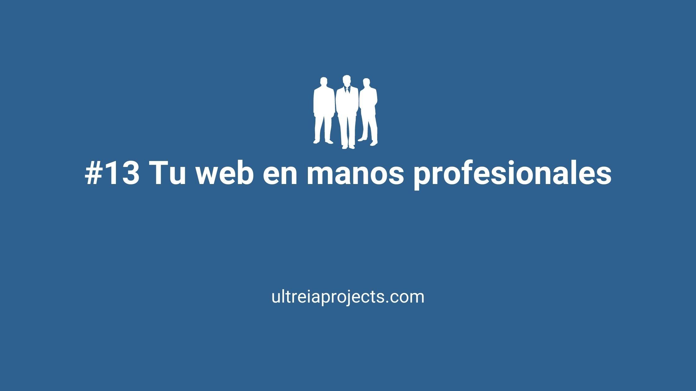tu web en manos de profesionales